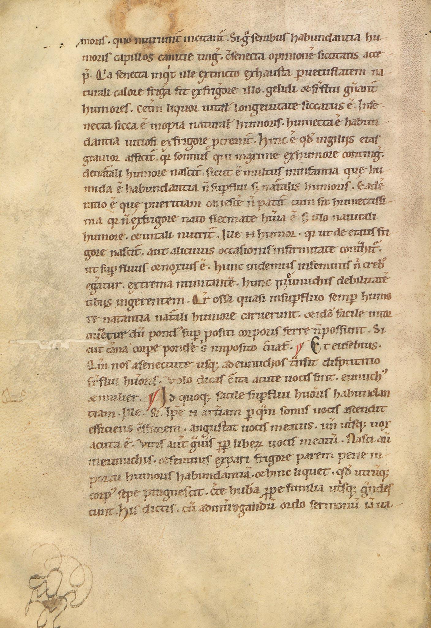 Manuscrit-Saturnales-119v°